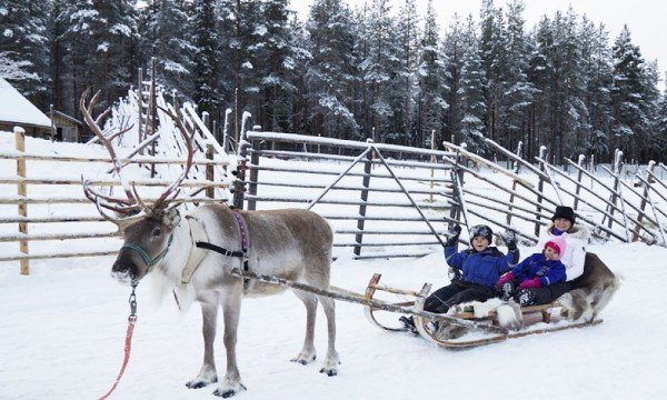 lapland is on sale now