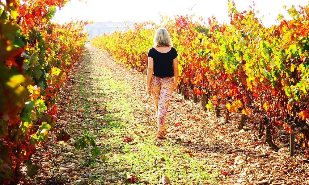 Discovering Rioja