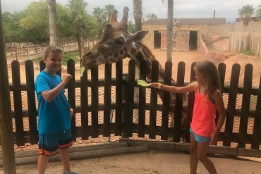 things to do with kids in murcia