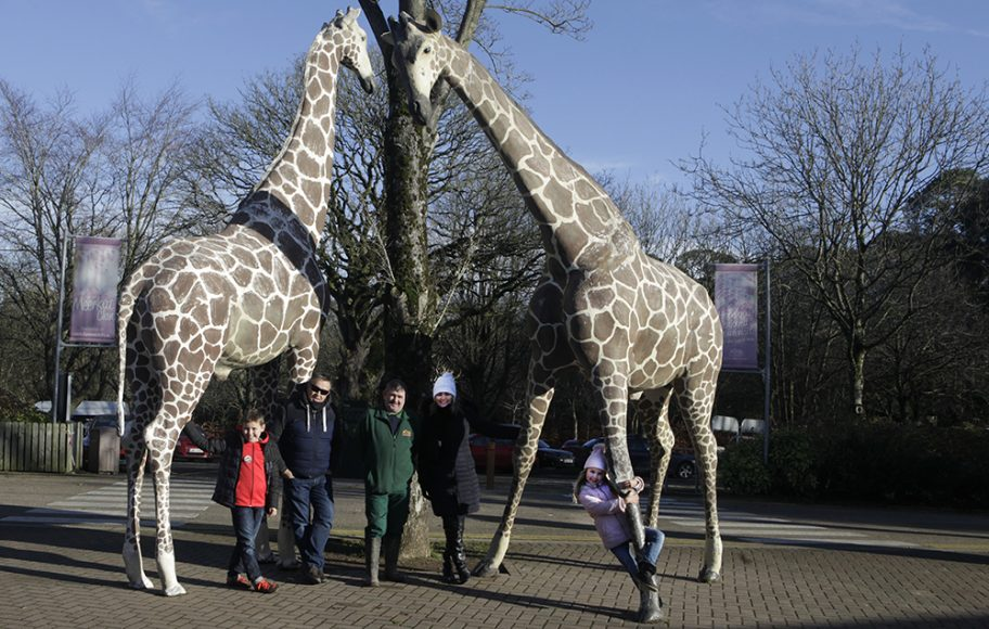 VIP Family Experience at Fota Wildlife Park