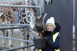 VIP Family Experience at Fota Wildlife Park