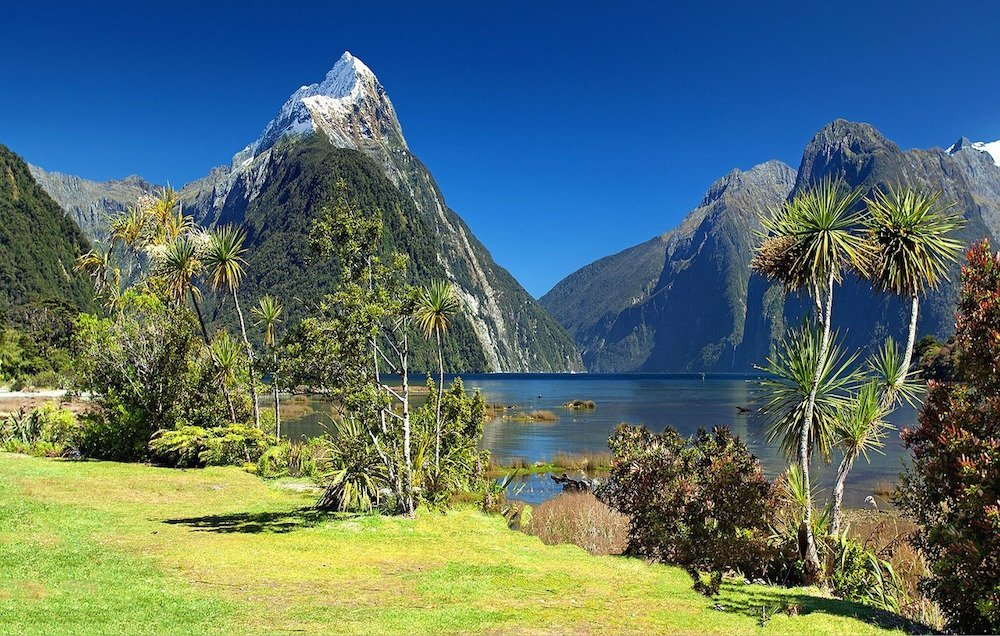 new zealand bucket list holiday destination