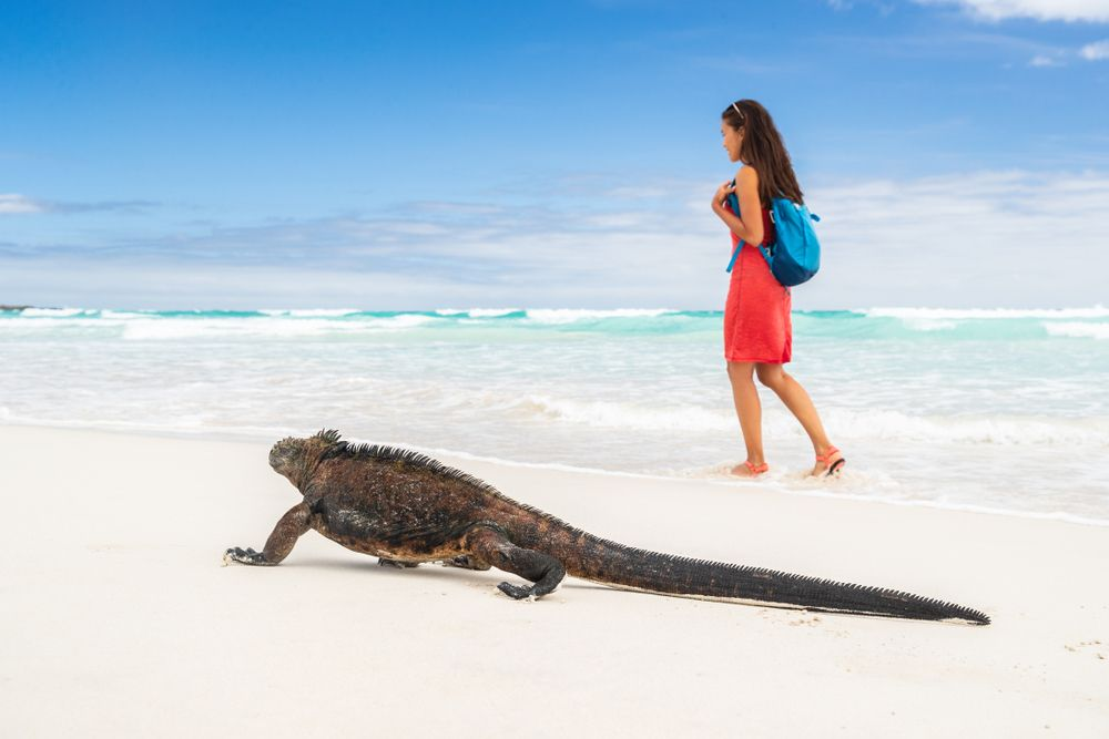 bucket list holidays to the galapagos islands