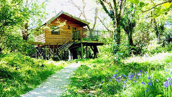 tree house glamping in ireland