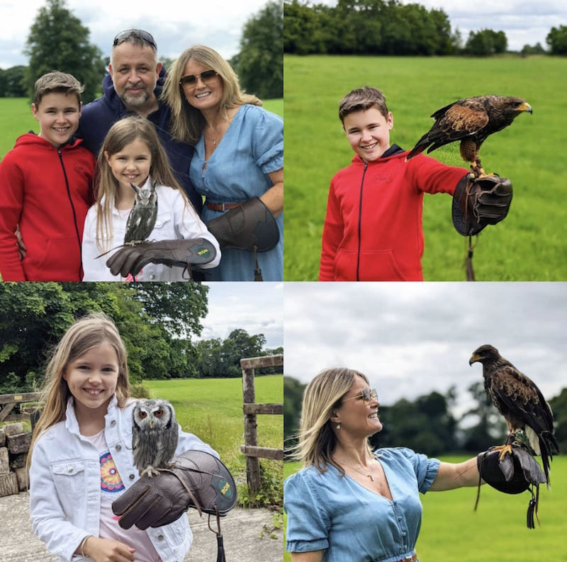 Try a falconry experience in KIlkenny with kids