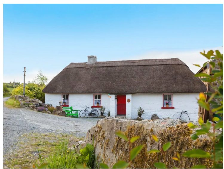 pet friendly thatched cottage on airbnb