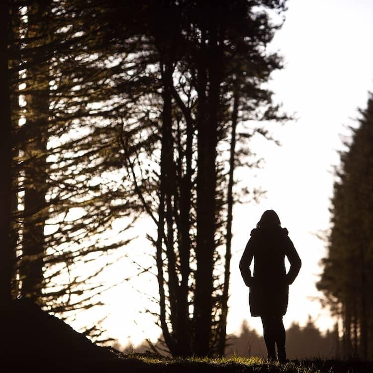 forest walks in Dublin mountains