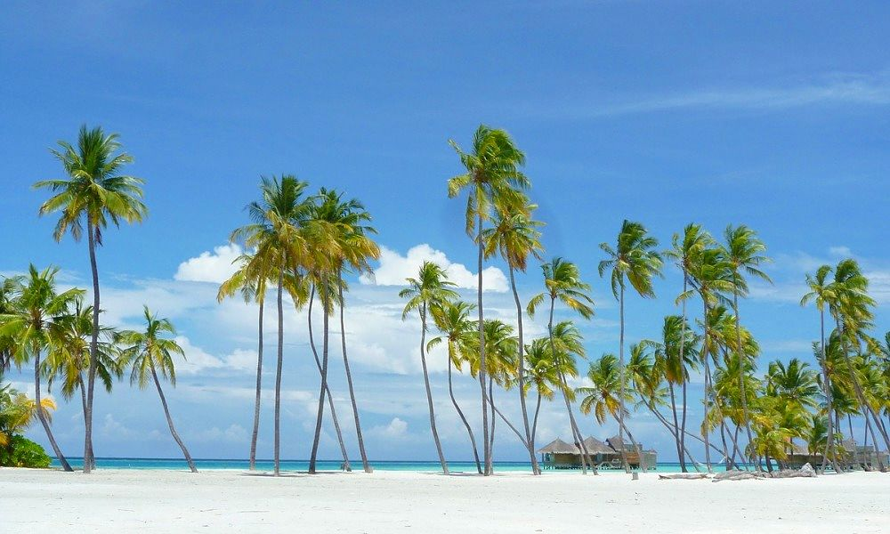 Paradise Islands in the Seychells.