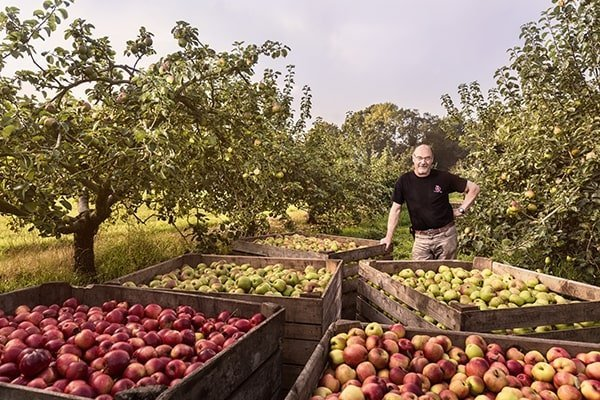 The Armagh cider tour is one of Ireland's hidden gems