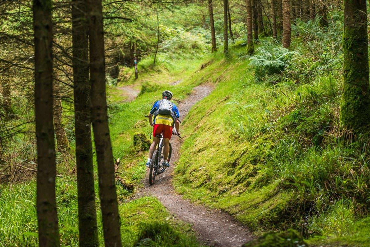 Ballyhoura bike trails in Limerick