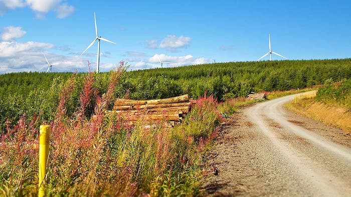 Sliabh Bawn Trim Trail, Roscommon is one of the hidden gems in Ireland