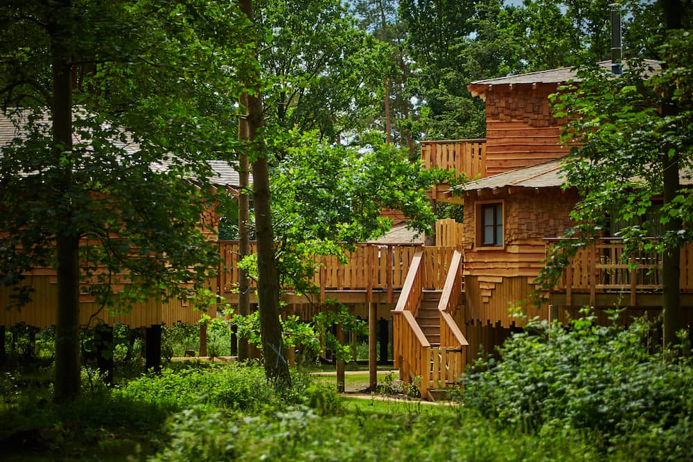 treehouses at Center Parcs Longford Forest