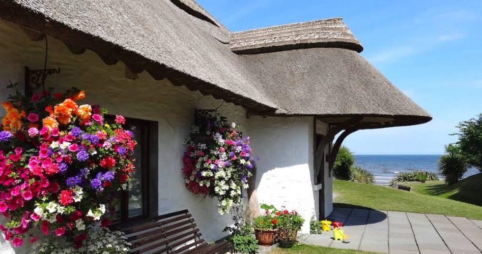 Thatchers Rest Cottage (1)