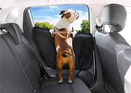 car accessories for travelling with pets