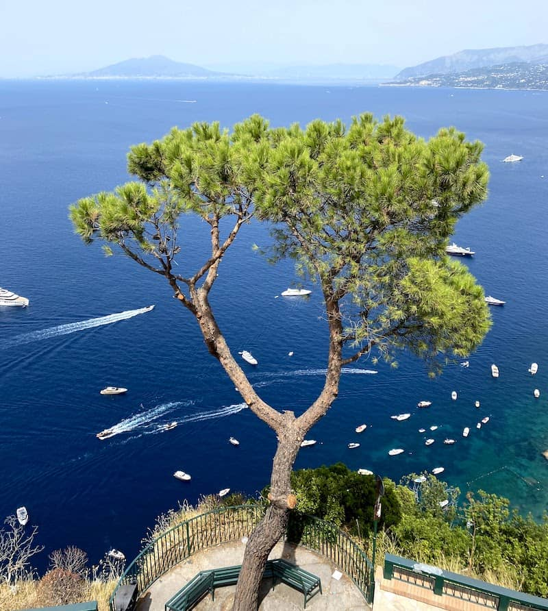 deal to Sorrento on the Amalfi Coast